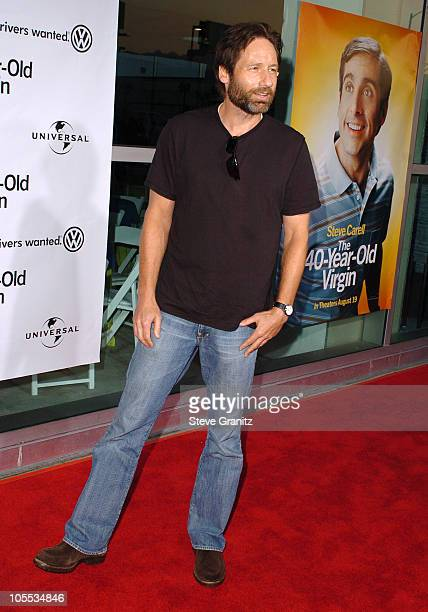"""David Duchovny during """"The 40-Year-Old Virgin"""" Los Angeles Premiere - Arrivals at ArcLight Theatre in Hollywood, California, United States."""