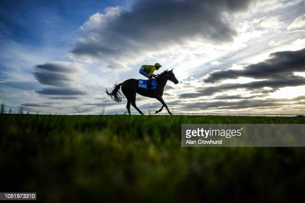 David Egan returns on Nearooz after winning The Godolphin Under Starters Orders Maiden Fillies' Stakes at Newmarket Racecourse on October 12 2018 in...