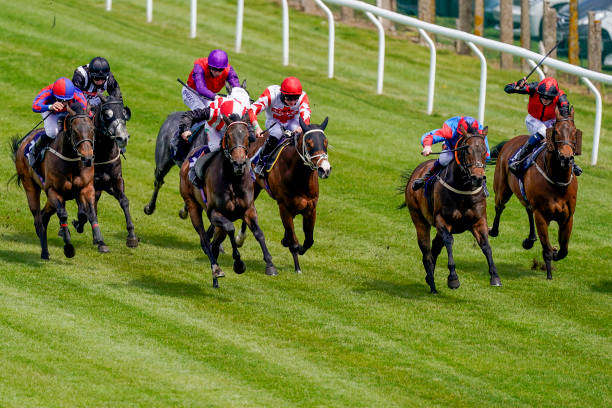 GBR: Brighton Races