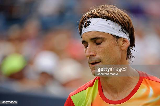 David Ferrer of Spain reacts during a final match against Roger Federer of Switzerland on day 9 of the Western Southern Open at the Linder Family...