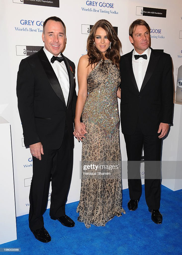 David Furnish, Elizabeth Hurley and Shane Warne attend the Grey Goose Winter Ball at Battersea Power station on November 10, 2012 in London, England.