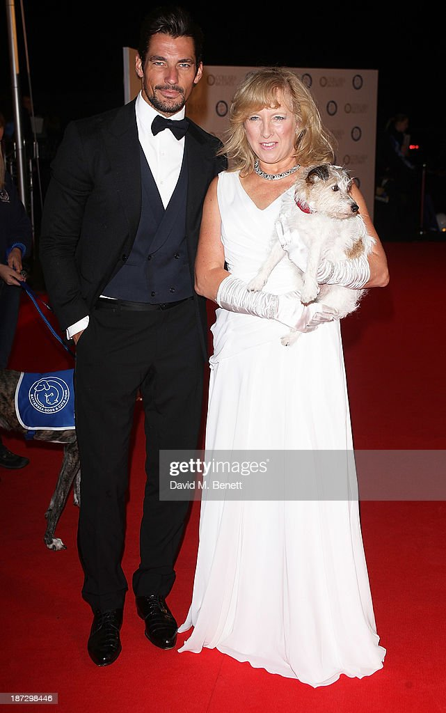 David Gandy and Claire Horton Battersea Dogs and Cats Home, CEO attend the annual Collars and Coats gala ball in aid of Battersea Dogs & Cats home at Battersea Evolution on November 7, 2013 in London, England.