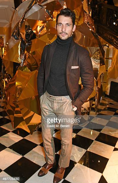 David Gandy attends the Claridge's Christmas Tree Party 2015 designed by Christopher Bailey for Burberry at Claridge's Hotel on November 18 2015 in...
