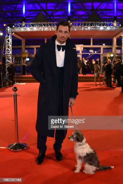 David Gandy poses with a dog at the Battersea Dogs Cats Home Collars Coats Gala Ball 2018 at Battersea Evolution on November 01 2018 in London England