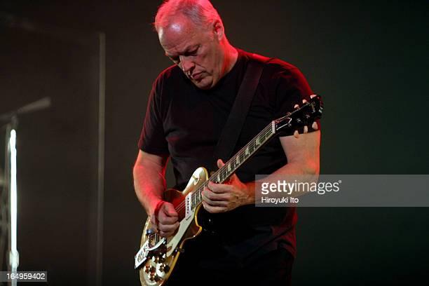 60 Fotos E Imágenes De Gran Calidad De David Gilmour Getty