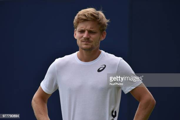 David Goffin is pictured during a training session during day one of the FeverTree Championships at Queens Club London on June 18 2018