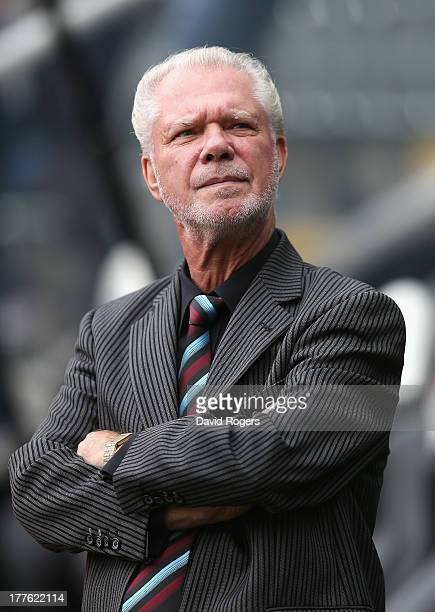 David Gold, chairman of West Ham United, looks on during the Barclays Premier League match between Newcastle United and West Ham United at St James'...
