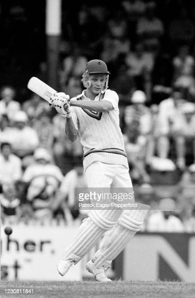 David Gower of England batting during his innings of 98 not out in the 2nd Test match between Australia and England at the SCG, Sydney, Australia,...