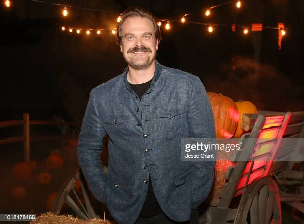 David Harbour attends Netflix's 'Stranger Things' 12 Emmy nominations celebration at Hollywood Forever on August 17 2018 in Hollywood California