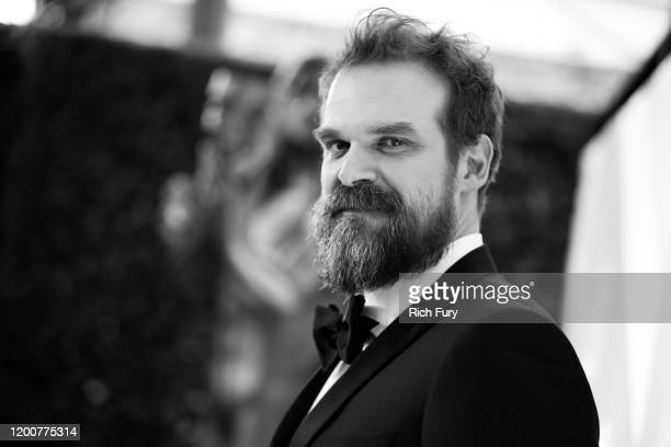 David Harbour attends the 26th Annual Screen Actors Guild Awards at The Shrine Auditorium on January 19 2020 in Los Angeles California