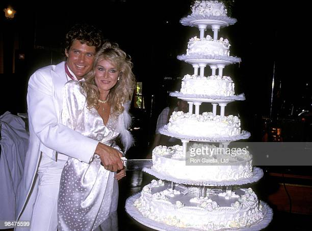 David Hasselhoff and Catherine Hickland