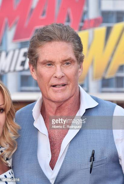 David Hasselhoff attends the Los Angeles Global Premiere for Marvel Studios' 'AntMan And The Wasp' at the El Capitan Theatre on June 25 2018 in...