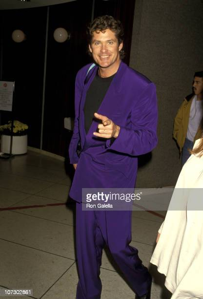 David Hasselhoff during David Hasselhoff Sighting at Los Angeles International Airport January 26 1994 at Los Angeles International Airport in Los...