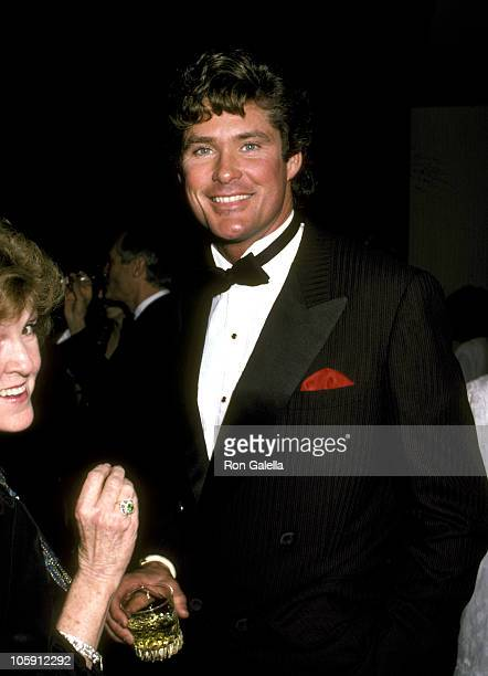 David Hasselhoff during Jewish National Funds Annual Tree of Life Awards at Sheraton Premiere Hotel in Los Angeles California United States
