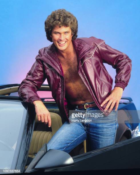 David Hasselhoff poses for a portrait in Los Angeles California