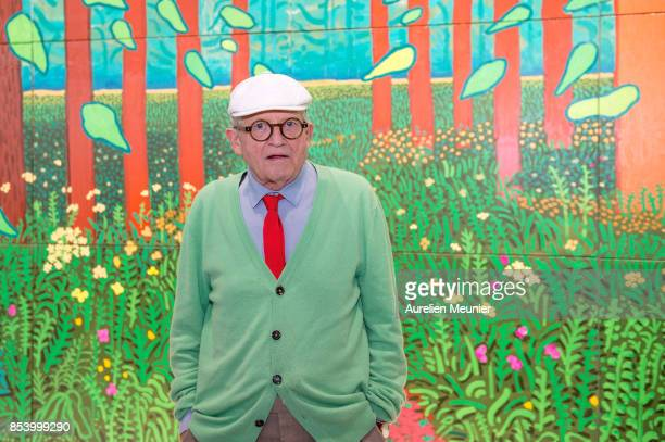 David Hockney poses in front of his painting The Arrival Of Spring in Woldgate East Yorkshire in 2011 which he offered to the museum at Centre...