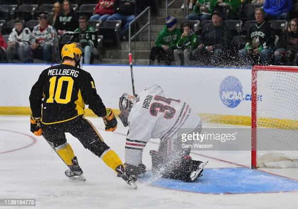 David Hrenak of the St Cloud State Huskies covers the puck as Martin Mellberg of the American International Yellow Jackets skates in during an NCAA...