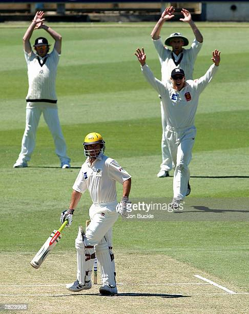 David Hussey of the Bushrangers celebrates with teamates Ian Harvey and Matthew Elliott after Brad Hogg of the Warriors is caught behind by...