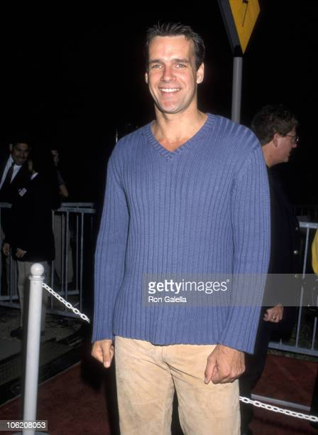 David James Elliott during Premiere of Lion King II Simba's Pride at Wadsworth Theatre in Westwood California United States