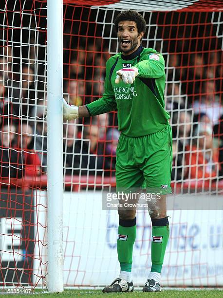 David James of Bournemouth organises his defence during the npower League One match between Brentford and Bournemouth at Griffin Park on January 01...