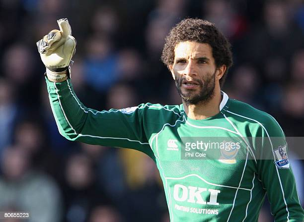 David James of Portsmouth organizes his defence during the Barclays Premier League match between Portsmouth and Newcastle United at Fratton Park on...