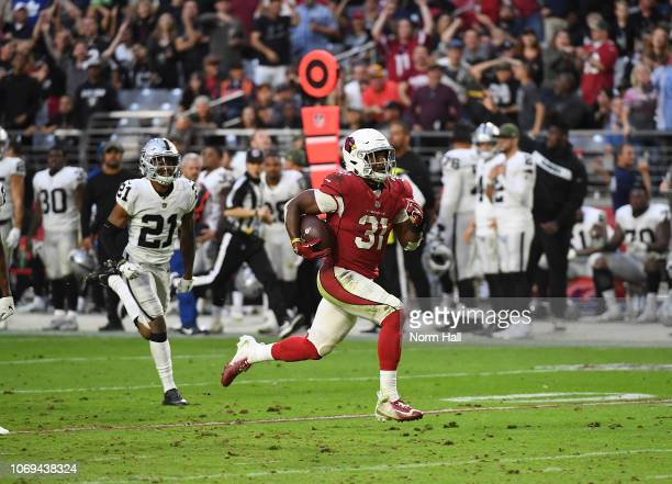 David Johnson of the Arizona Cardinals runs with the ball against the Oakland Raiders at State Farm Stadium on November 18 2018 in Glendale Arizona