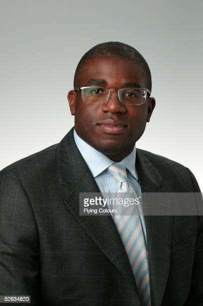 David Lammy MP Labour Tottenham