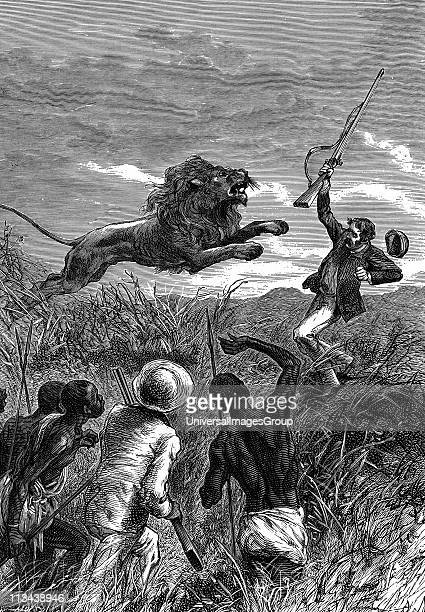 UNSPECIFIED David Livingstone Scottish missionary and African explorer Livingstone being charged by a lion Saved by Mebalwe a native schoolmaster who...