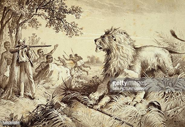 David Livingstone the explorer being attacked by a lion during an expedition in Africa