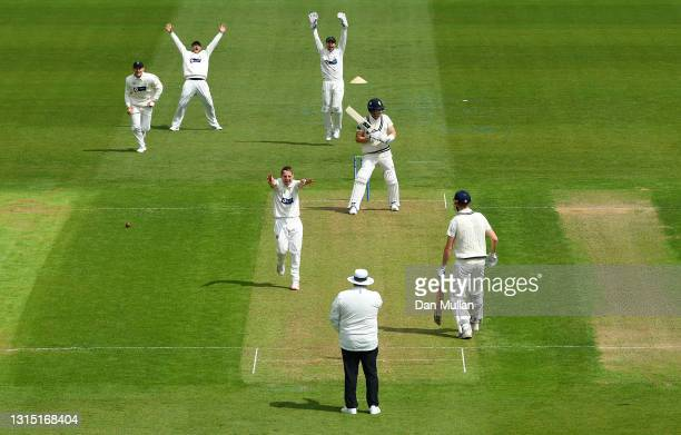David Lloyd of Glamorgan celebrates taking the wicket of Joe Denly of Kent during day one of the LV= County Championship match between Glamorgan and...
