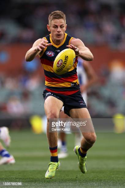 David Mackay of the Crows competes for the ball during the round 23 AFL match between Adelaide Crows and North Melbourne Kangaroos at Adelaide Oval...