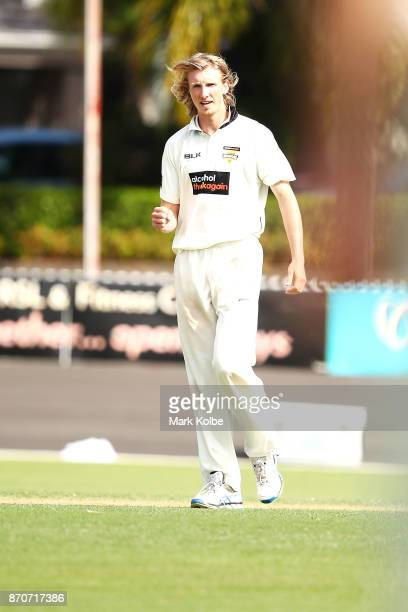 David Moody of the Warriors celebrates taking the wicket of Nic Maddinson of the Blues during day three of the Sheffield Shield match between New...