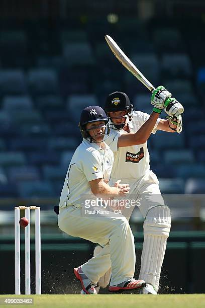 David Moody of Western Australia bats during day two of the Sheffield Shield match between Western Australia and Victoria at WACA on November 28 2015...