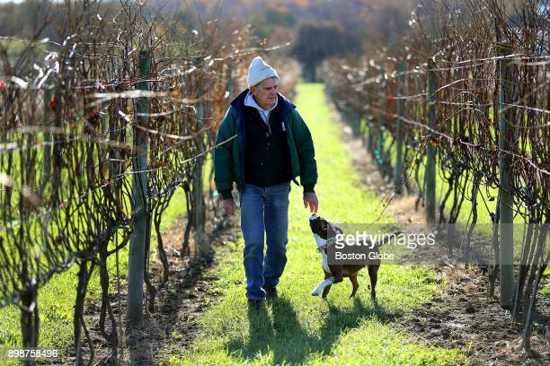 David Neilson and his dog Jasmine walk through his vineyard in Dartmouth MA on Nov 15 2017 Shortly after his 50th birthday Neilson got serious about...
