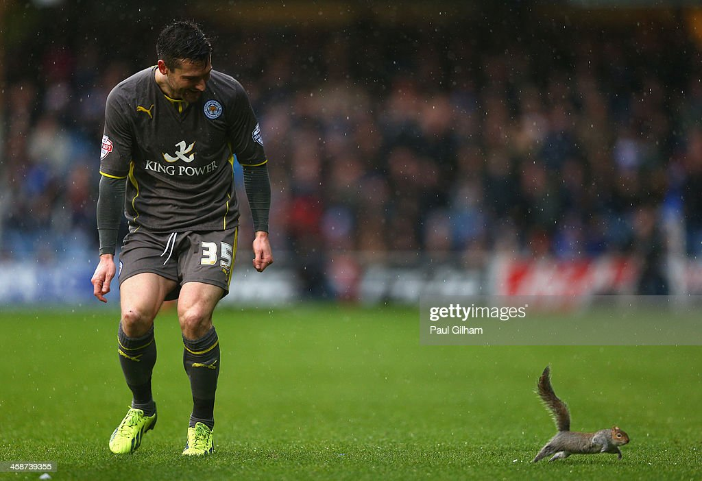 Queens Park Rangers v Leicester City - Sky Bet Championship