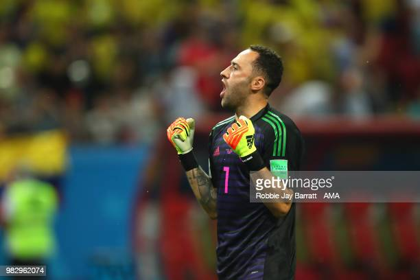 David Ospina of Colombia celebrates during the 2018 FIFA World Cup Russia group H match between Poland and Colombia at Kazan Arena on June 24 2018 in...