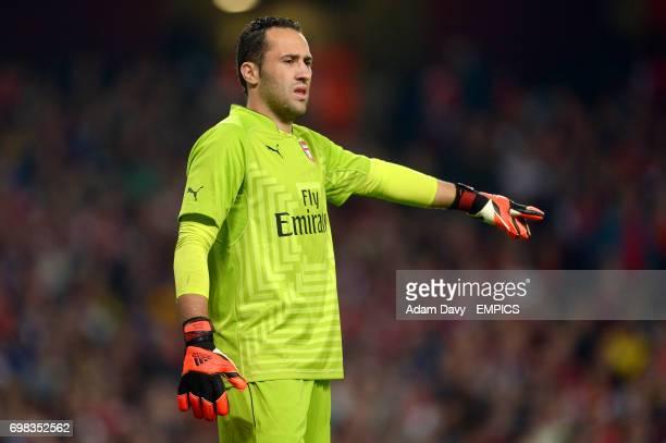 David Ospinna Arsenal goalkeeper