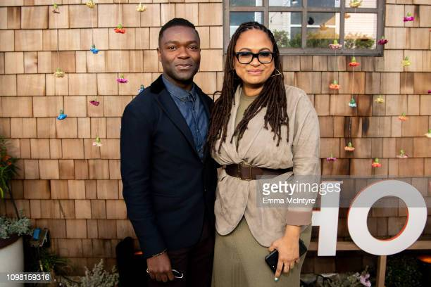 David Oyelowo and Ava Duvernay attend the 3rd annual National Day of Racial Healing on January 22 2019 in Los Angeles California