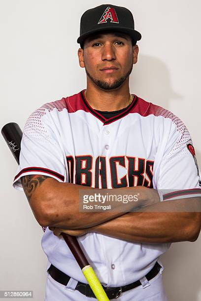 David Peralta of the Arizona Diamondbacks poses during photo day at Salt River Fields at Talking Stick on February 28 2016 in Scottsdale Arizona