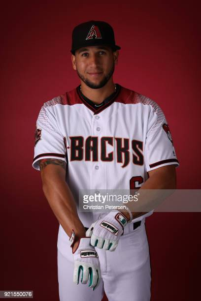 David Peralta of the Arizona Diamondbacks poses for a portrait during photo day at Salt River Fields at Talking Stick on February 20 2018 in...