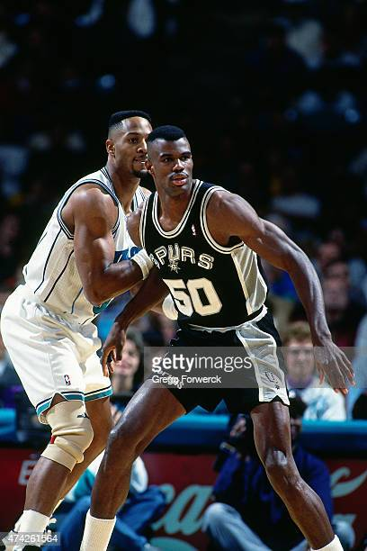 David Robinson of the San Antonio Spurs battles for position against the Charlotte Hornets on December 1 1993 at Charlotte Coliseum in Charlotte NC...