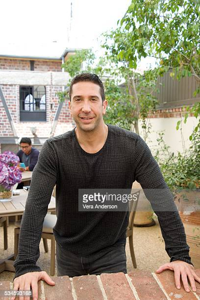 David Schwimmer at the 'Feed The Beast' Press Conference on May 26 2016 in West Hollywood California