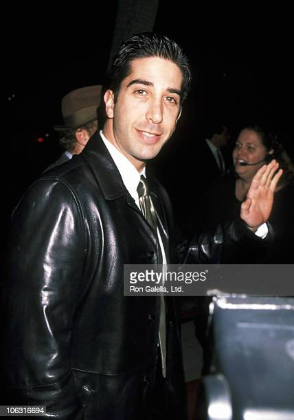 David Schwimmer during David Schwimmer at the Premiere of Georgia at Samuel Goldwyn Theater in Beverly Hills California United States
