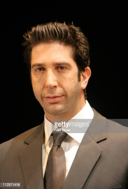 David Schwimmer during 'Some Girl' Play Photocall May 19 2005 at Gielgud Theatre in London in London United Kingdom