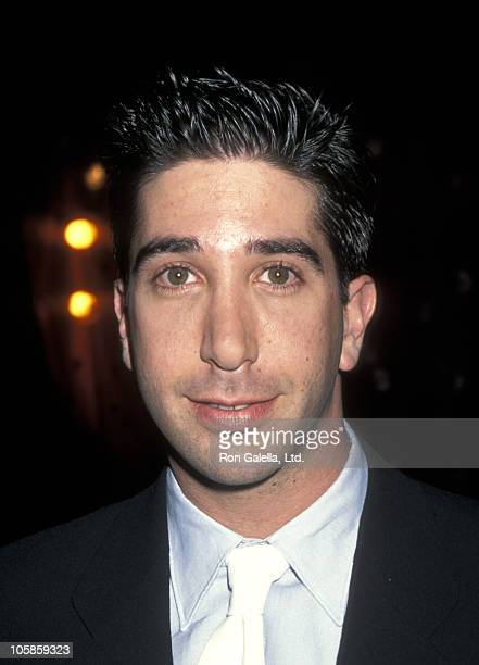David Schwimmer during The Pallbearer Los Angeles Premiere at The Directors Guild of America Theatre in Los Angeles California United States