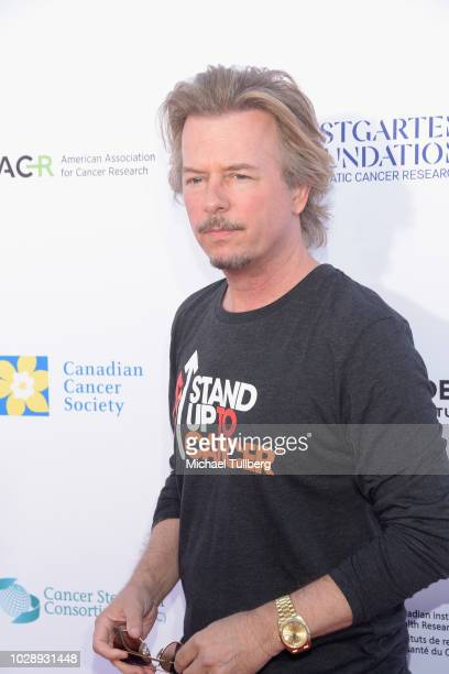 David Spade attends the 2018 Stand Up To Cancer fundraising special telecast at Barker Hangar on September 7 2018 in Santa Monica California
