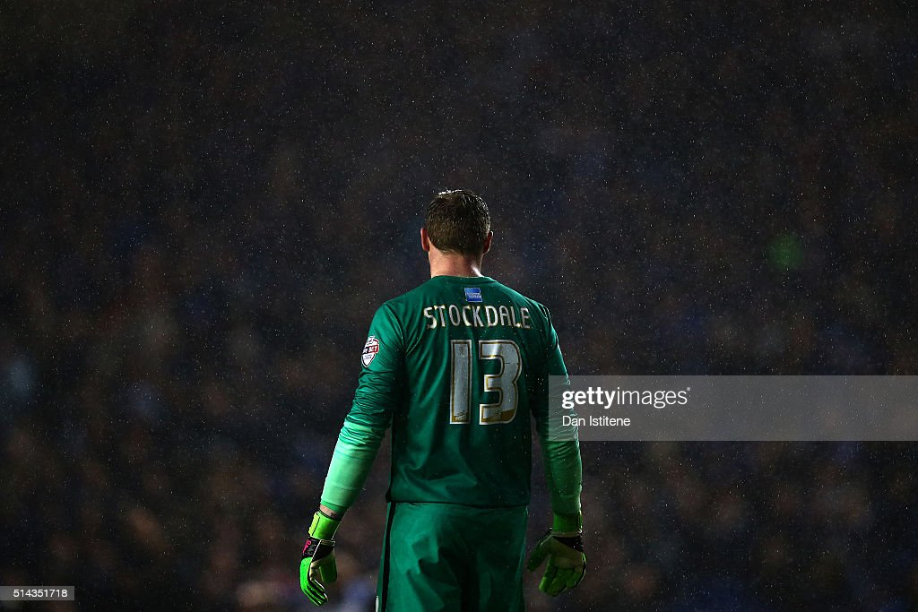 David Stockdale of Brighton and Hove Albion looks on as rain falls during the Sky Bet Championship match between Brighton and Hove Albion and Sheffield Wednesday at Amex Stadium on March 8, 2016 in Brighton, United Kingdom.
