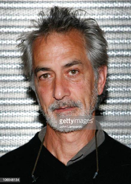 David Stratharin attends the screening of 'The People Speak' at BAM Peter Jay Sharp Building on November 4 2010 in the Brooklyn borough of New York...