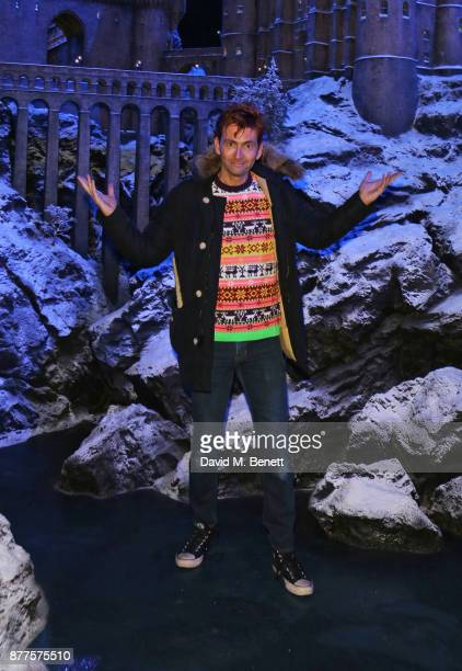 David Tennant attends the VIP launch of 'Hogwarts In The Snow' at Warner Bros Studio Tour London The Making Of Harry Potter on November 22 2017 in...