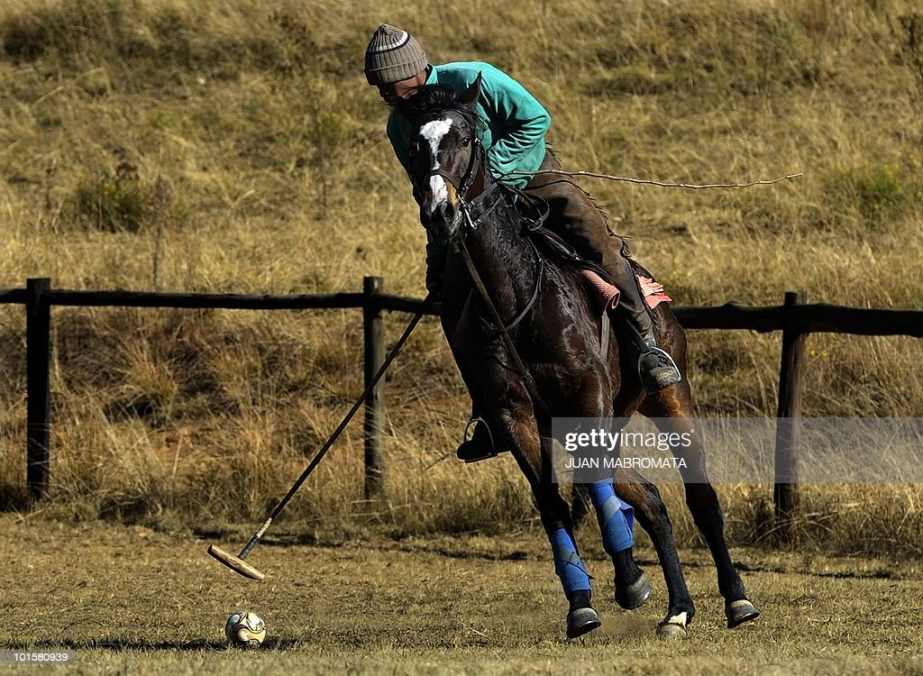 David trains a polo horse using a small football near Balgowan, some 400 km south-east of Johannesbourg on June 3, 2010 where the Paraguay national football squad have their base camp for the FIFA 2010 World Cup hosted in South Africa from June 11 to July 11.